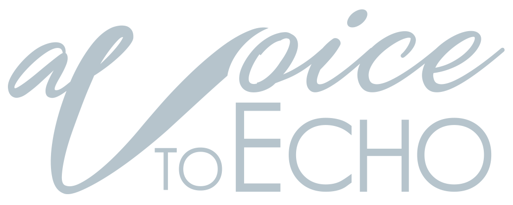 a-voice-to-echo-logo
